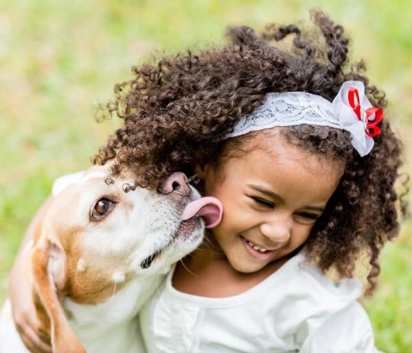 doggy-day-care-arlington-tx